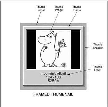 Thumb Nail Anatomy 8876351 Follow4morefo